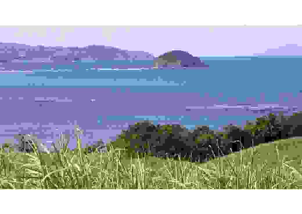 Paysage de la Martinique entre terre et mer