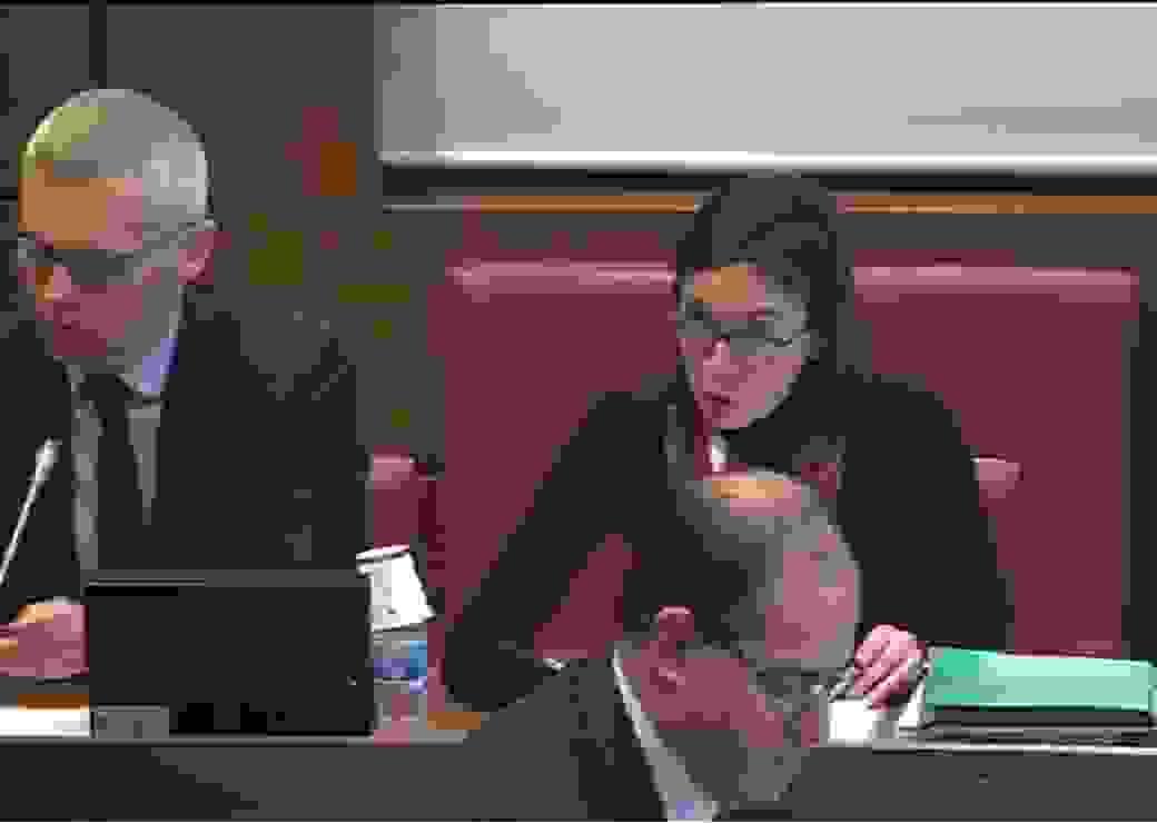 Bénédicte Peyrol et Christophe Bouillon présentant leur rapport le 30 janvier devant la commission des finances de l'Assemblée