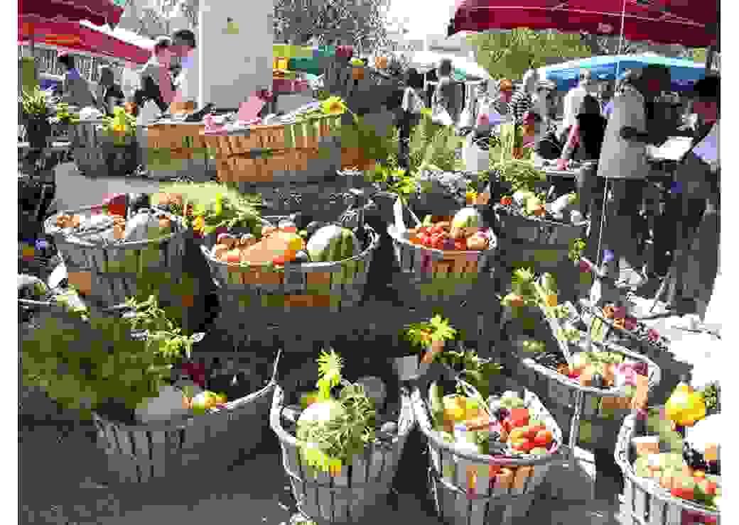 Les saveurs du Luberon inspirent le projet alimentaire territorial du PNR