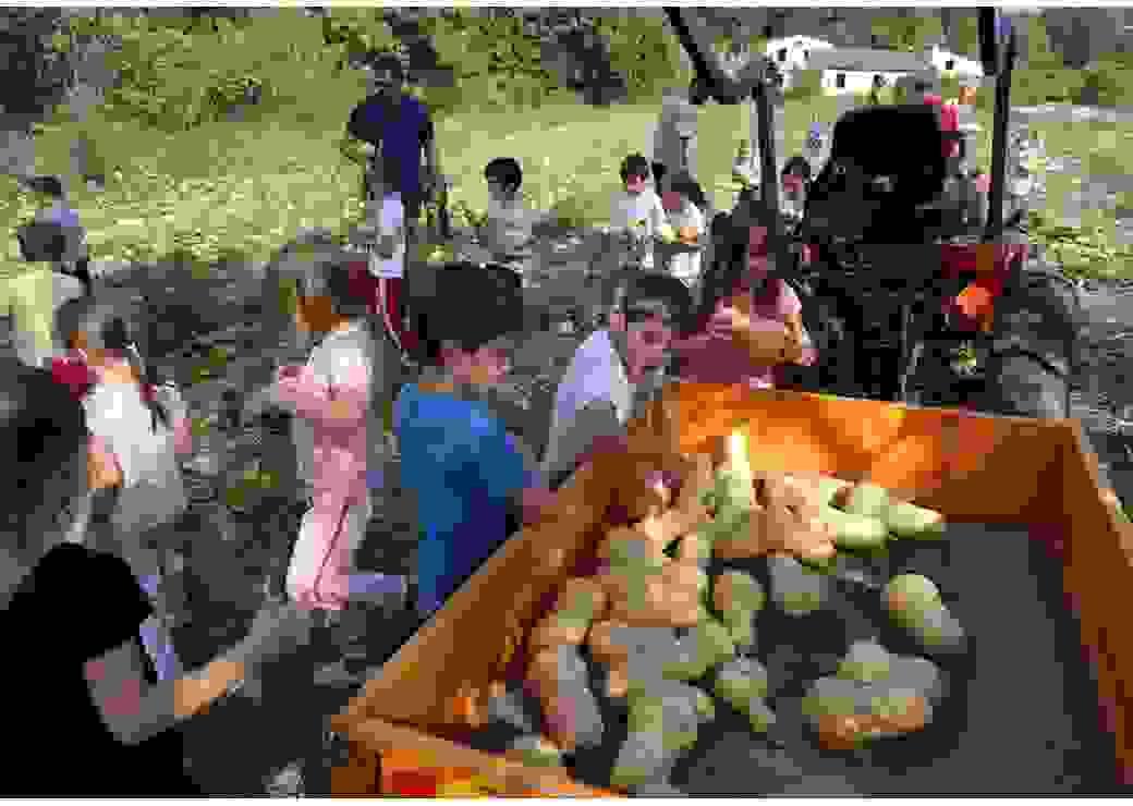 Manger bio et durable à Mouans-Sartoux