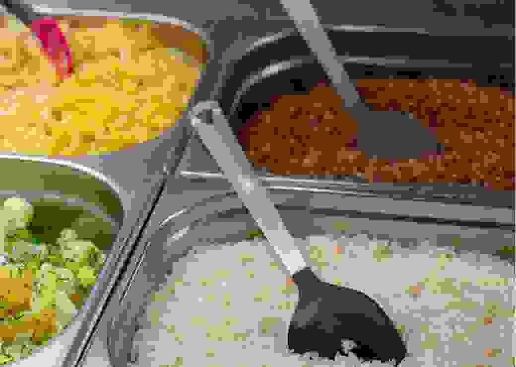Repas végétarien cantine scolaire Loi Egalim