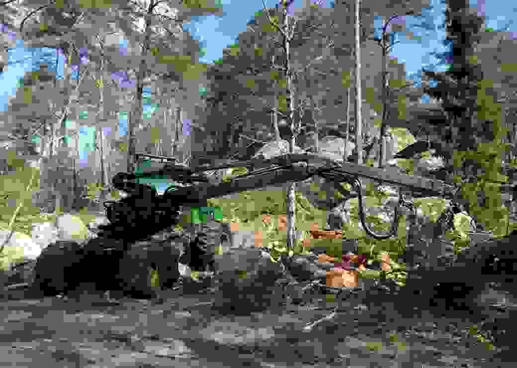 Gestion des petites parcelles forestières