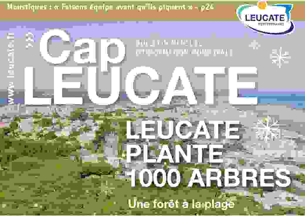 Leucate plante une forêt à la plage (11)