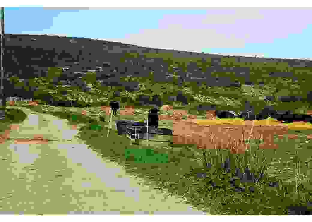 Reconquérir des friches pour des projets agricoles (11)