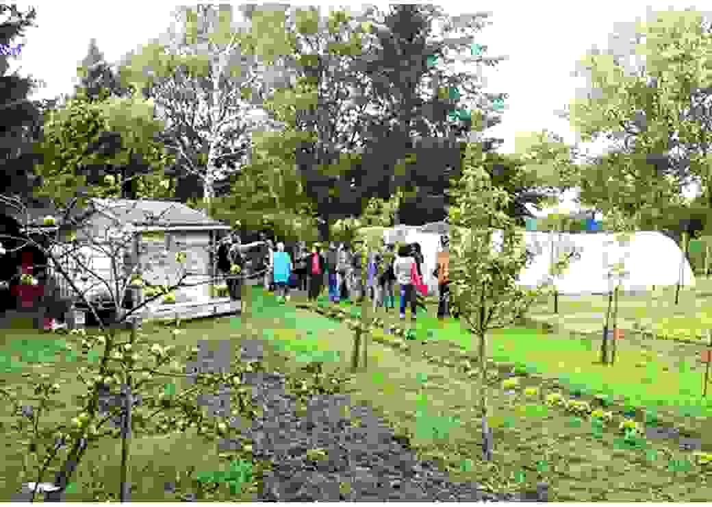 Plan très large d'un groupe de personnes au milieu d'un jardin potager.