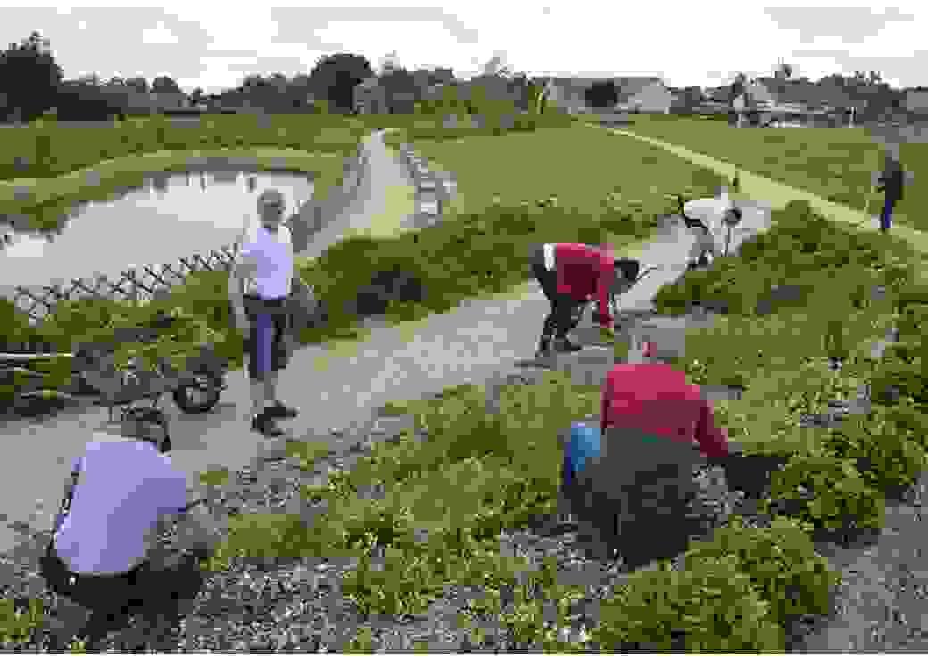 La photo plan large montre 6 personnes en train de travailler la terre d'un espace vert, dans un jardin public où l'on voit aussi un étang sur le côté droit et des maisons en arrière plan