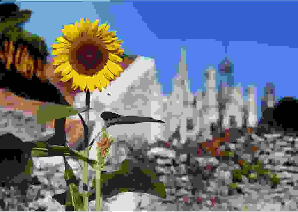 Jardins potagers Chambord 1