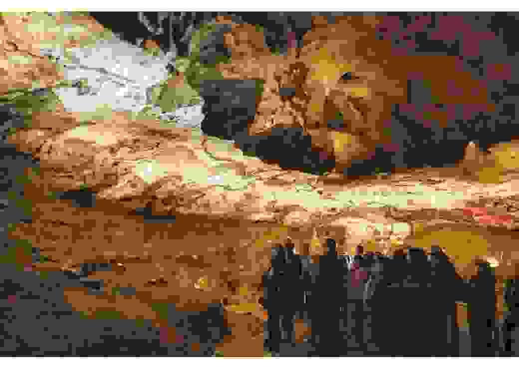 Visite de la Grotte de Lascaux