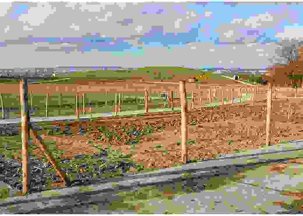 Plan large sur un parc en cours d'aménagement, avec de la terre retournée, des piquets et un tractopelle. Au fond se dessine une ville