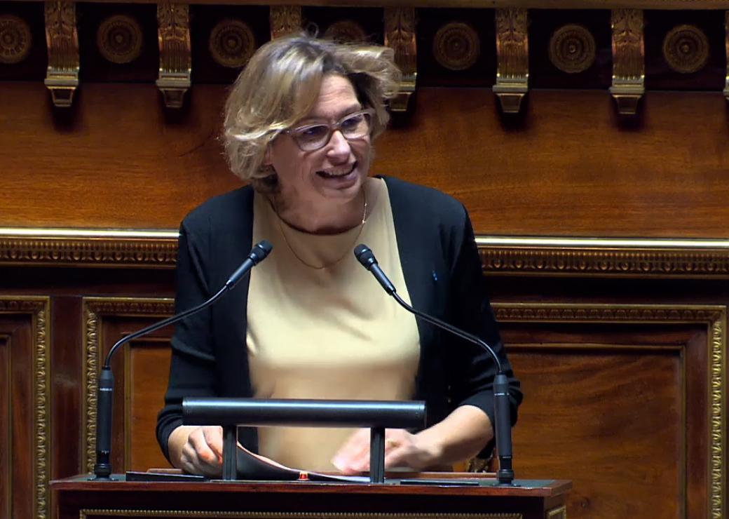 Missions locales Sénat Nathalie Delattre
