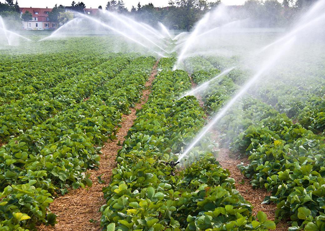 """""""Varenne agricole de l'eau et du changement climatique"""" : travaux en cours"""
