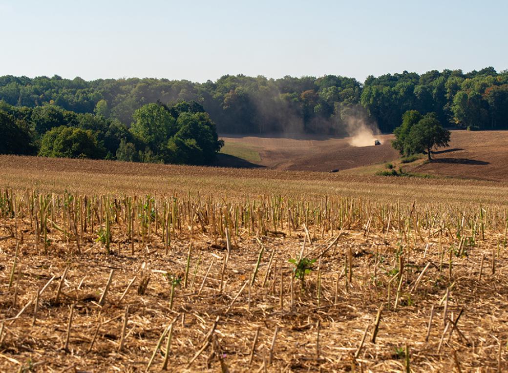 Sécheresse Agriculture, le travail de la terre en été, département Meuse, région Grand Est, France