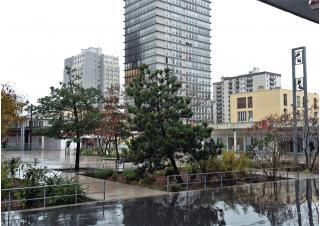 Quartier Politique de la Ville Habitat social